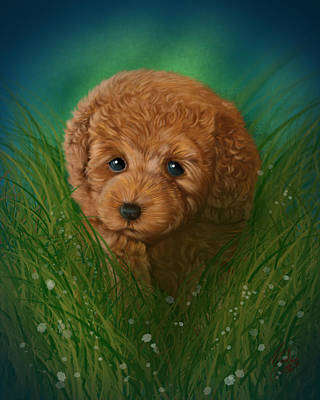Puppies Digital Art - Toy Poodle Puppy by Michael Conley