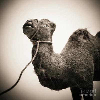 Toy Representing A Camel. Art Print by Bernard Jaubert