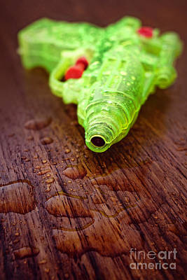 Photograph - Toy Water Pistol by Minolta D
