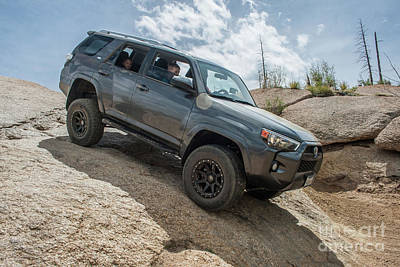 Photograph - Toyota 4 Runner by Tony Baca