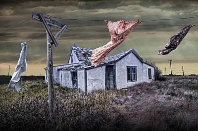 Photograph - Traces Of A Prairie Past Life by Randall Nyhof