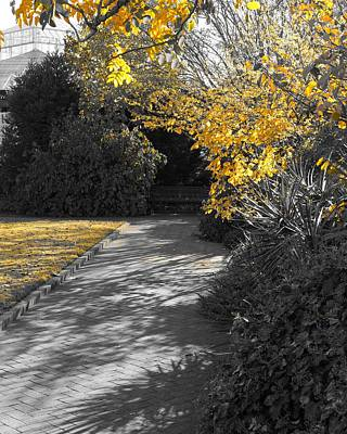 Photograph - Traces Of Yellow 3 by Rodney Lee Williams