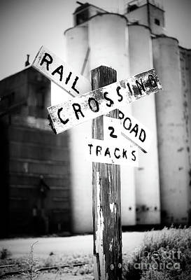 Photograph - Track Crossing by Fred Lassmann