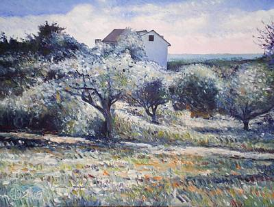 Track Leading Alongside Orchard With Farmhouse Near Monte Cardeto Italy 2009 Art Print by Enver Larney