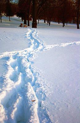 Snowmageddon Photograph - Tracks by Angela Siener