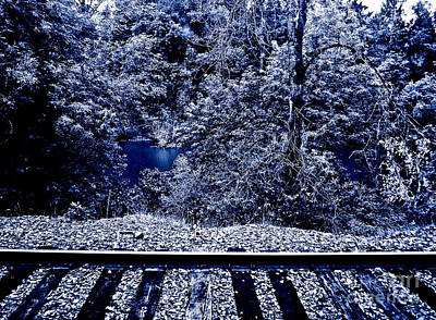 Tracks Art Print by Gwyn Newcombe