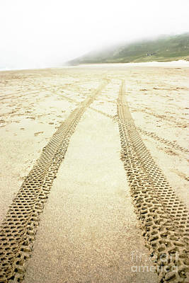 Photograph - Tracks In The Sand by Terri Waters