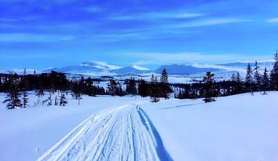 Photograph - Tracks In The Snow by Arnstein Saursaunet