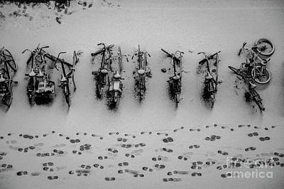 Photograph - Tracks N Bicycles by Hans Janssen