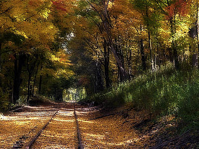 Tracks To Autumn Art Print