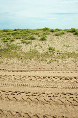 Photograph - Tracks Upon The Dunes by Cate Franklyn