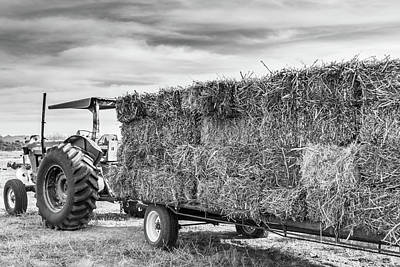 Photograph - Tractor And Hay by SR Green