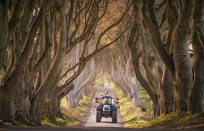 Tractor Approaching Through The Dark Hedges Art Print