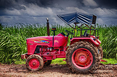 Photograph - Tractor by Charuhas Images