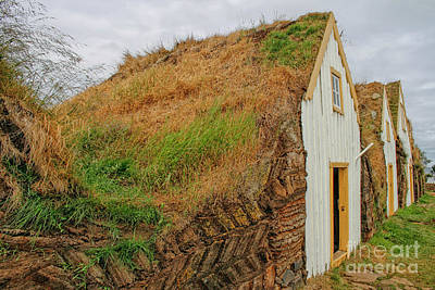 Photograph - Traditional Turf Houses In Iceland by Patricia Hofmeester