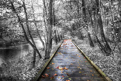 Photograph - Trail At The River In Autumns And Black And White by Debra and Dave Vanderlaan