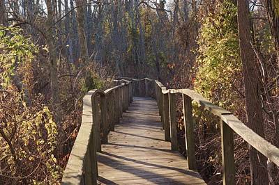 Photograph - Trail Bridge by Buddy Scott
