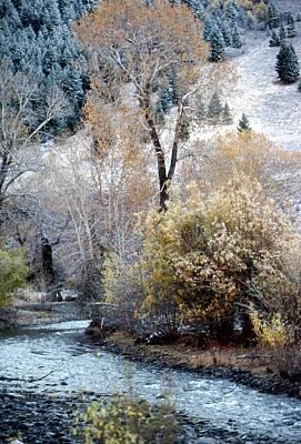 Photograph - Trail Creek by John Schneider