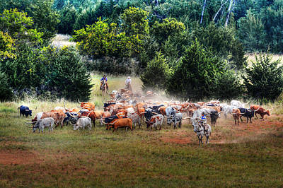 Cattle Drive Photograph - Trail Drive by Michael Ciskowski