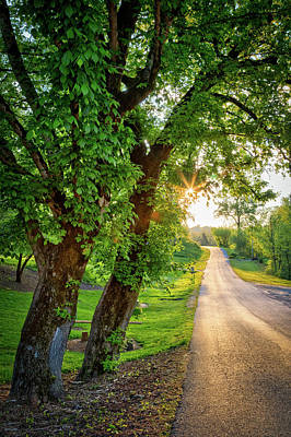 Photograph - Trail Into Sunset by Debra and Dave Vanderlaan