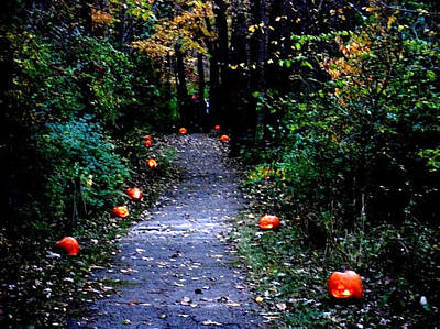 Photograph - Trail Of 100 Jack-o-lanterns by Steve Karol