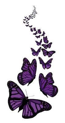 Digital Art - Trail Of The Purple Butterflies Transparent Background by Barbara St Jean