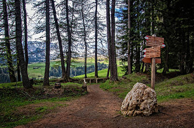 Photograph - Trail Options In Alpe Di Siusi by Carolyn Derstine