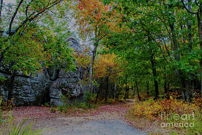 Photograph - Trail Past Indian Face Rock by Barbara Bowen