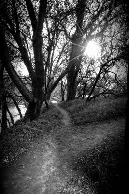 Photograph - Trail Path With Sunburst Shining Through Trees by Serena King