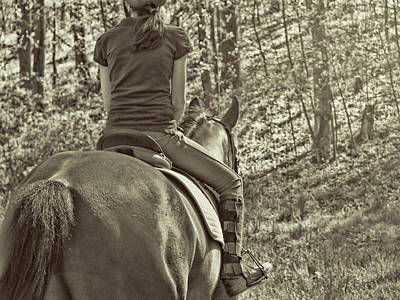 Photograph - Trail Riding Friends by JAMART Photography