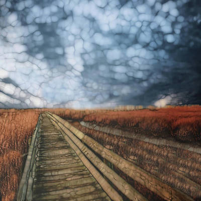 Shed Painting - Trail Series 4 by Jack Zulli