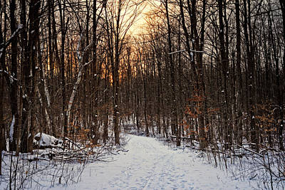 Trail Sunset Original by Phill Doherty