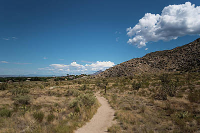 Photograph - Trail Through The Foothills by Tom Cochran