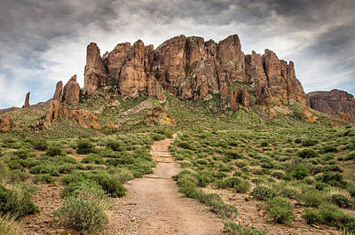 Photograph - Trail To Cliffs by Greg Nyquist