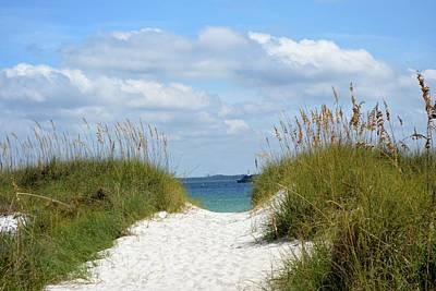 Panama City Beach Photograph - Trail To The Bay by Tamra Lockard