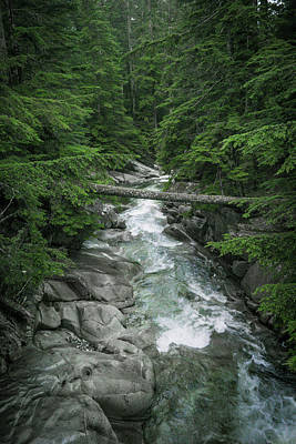 Photograph - Trail To The Falls by Crystal Hoeveler