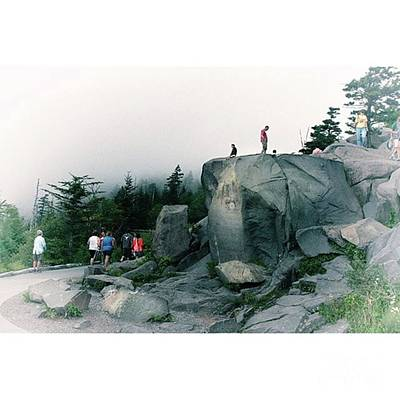 Trail Photograph - Trailhead Clingman's Dome Great by Larry Braun