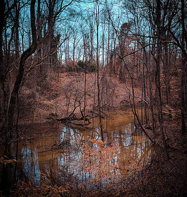 Photograph - Trailing Creek by Ant Pruitt