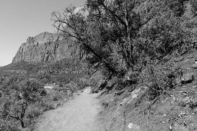 Photograph - Trails In Zion National Park by John McGraw