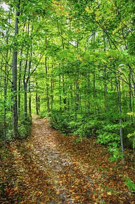 Photograph - Trailway by John M Bailey