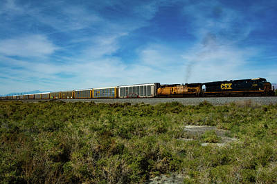 Photograph - Train Salton Sea Ca by William Kimble