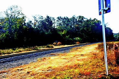 Photograph - Train Track At Green Cove Springs by Gina O'Brien