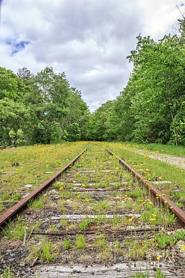 Unused Photograph - Train Tracks And Wildflowers by Edward Fielding