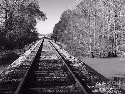 Photograph - Train Trail by Robin Lewis