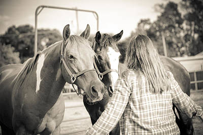 Photograph - Training The Horses In Sepia by Kelly Hazel