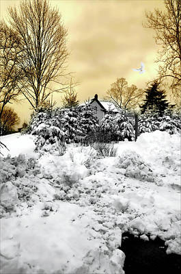 Connecticut Winter Photograph - Tramonto Invernale by Diana Angstadt