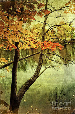 Photograph - Tranquil Autumn Day by Anita Pollak