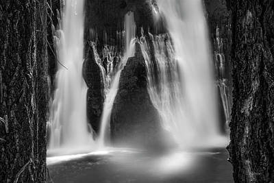 Photograph - Tranquil Black And White 6 by Leland D Howard