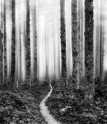 Photograph - Tranquil Black And White 7 by Leland D Howard