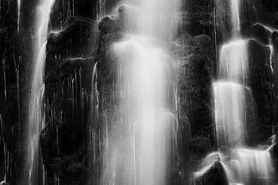 Photograph - Tranquil Black And White 9 by Leland D Howard